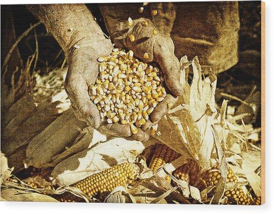 Harvest Of Plenty Wood Print