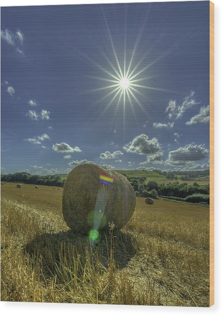 Harvest Sun Wood Print