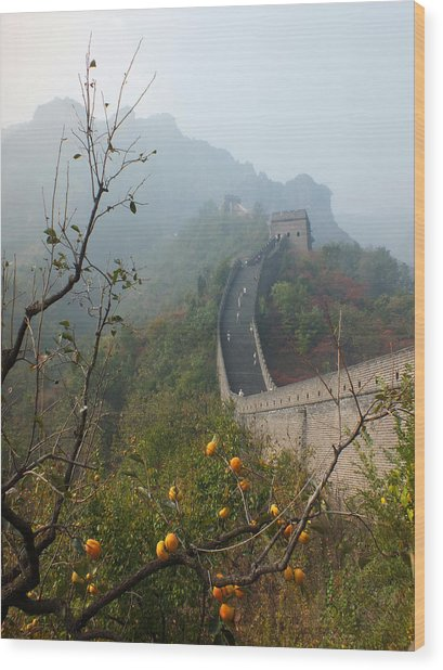 Harvest Time At The Great Wall Of China Wood Print