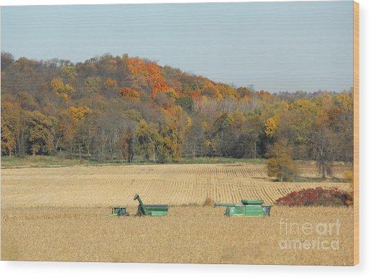 Harvesting Iowa Corn  Wood Print