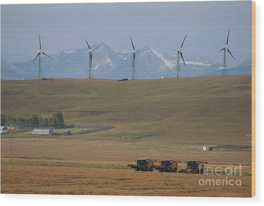 Wood Print featuring the photograph Harvesting Wind And Grain by Ann E Robson