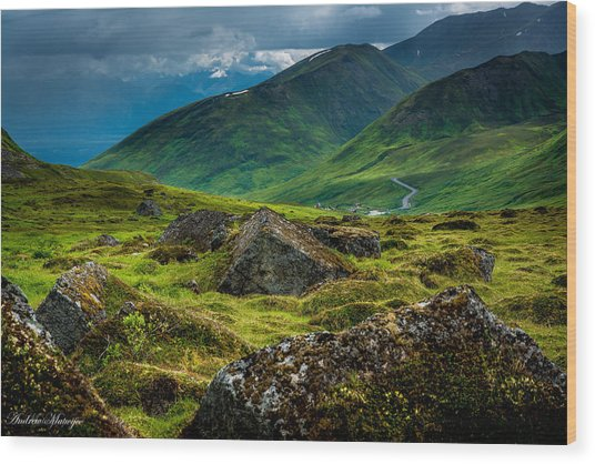 Hatcher's Pass  Wood Print