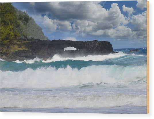 Hawaii Coastline Wood Print