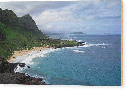 Hawaiian Coastline Wood Print