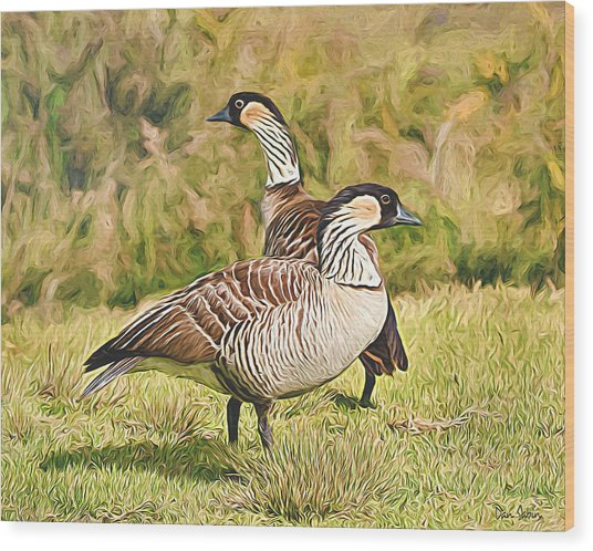 Hawaiian Goose Couple Wood Print