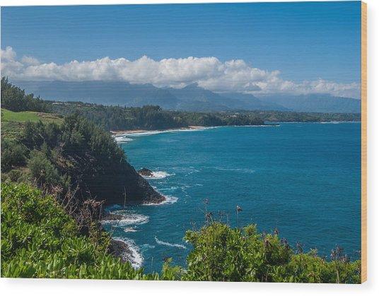 Hawaiian Paradise Wood Print