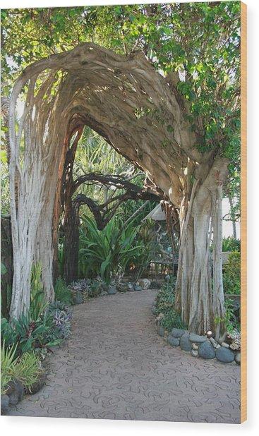 Hawaiian Pathway Wood Print