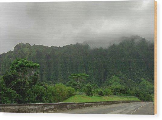 Hawaiian Rain Forest Wood Print