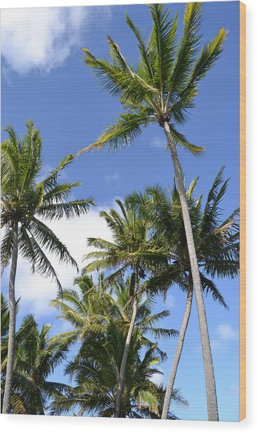 Hawaiian Skies Wood Print