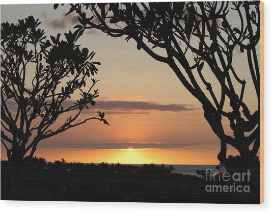 Hawaiian Sunset All Profit Go To Hospice Of The Calumet Area Wood Print