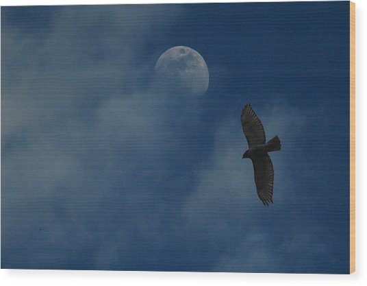 Hawk And Moon Coming Out Of The Mist Wood Print