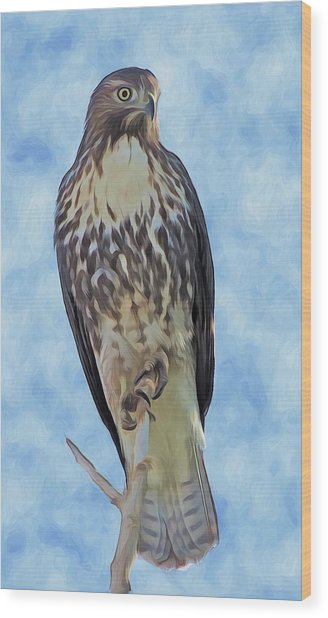 Hawk By Frank Lee Hawkins Wood Print