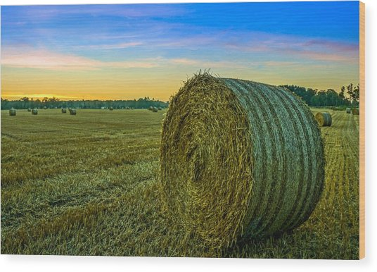 Hay Bales Before Dusk Wood Print