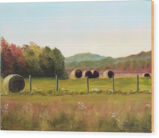 Hay Bales In The Cove Wood Print by Joan Swanson