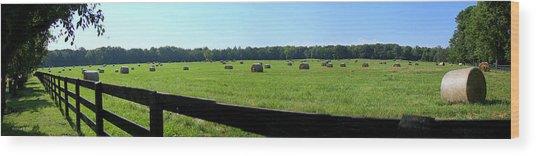 Hay Hay Wood Print