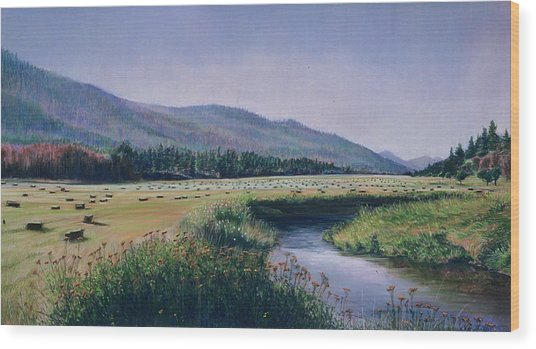 Hayfield And River Wood Print