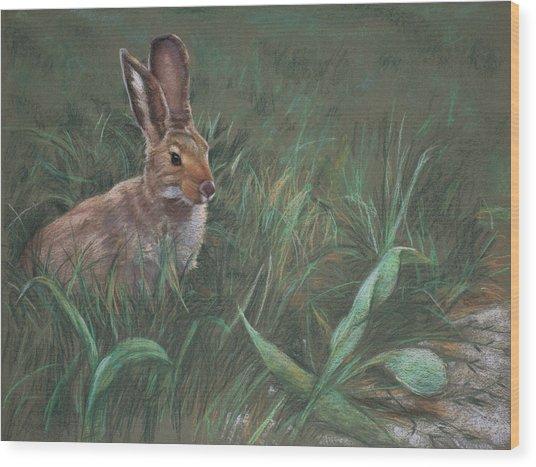 Hazel Wood Print