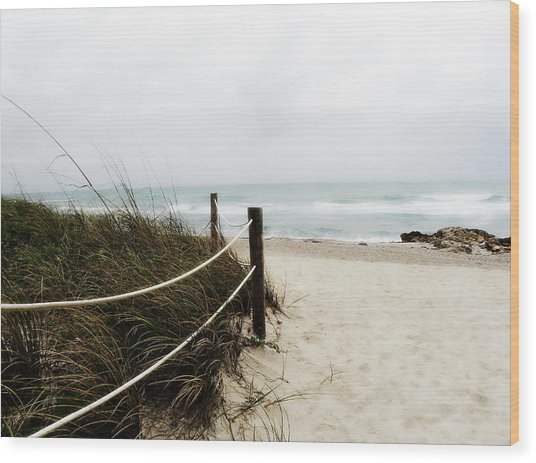 Hazy Beach Day Wood Print