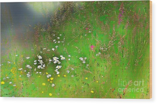 Hazy Meadow Abstract Wood Print