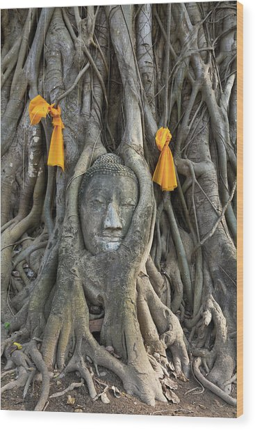 Head Of The Sand Stone Buddha Image Wood Print