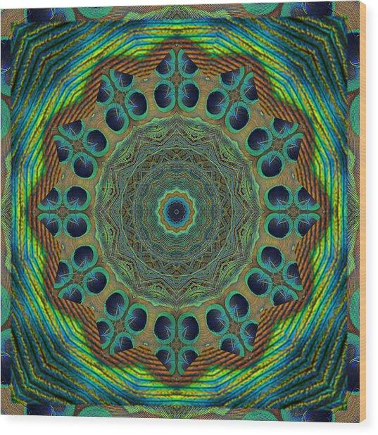 Healing Mandala 19 Wood Print