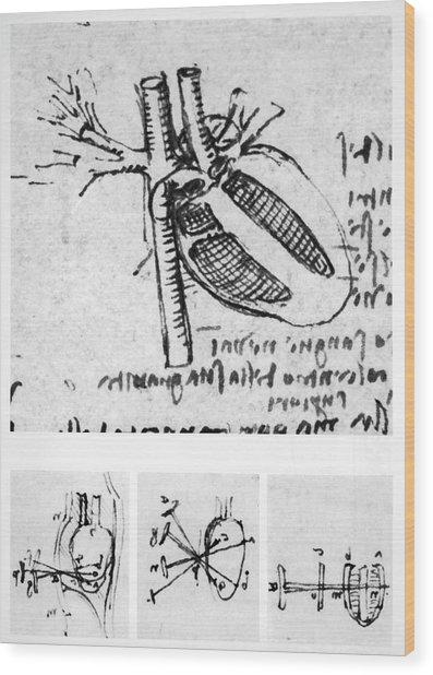 Heart Anatomy Wood Print by