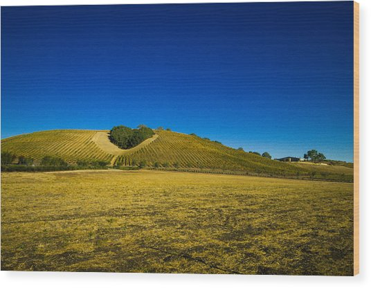 Heart Hill 3 Wood Print by Connie Cooper-Edwards