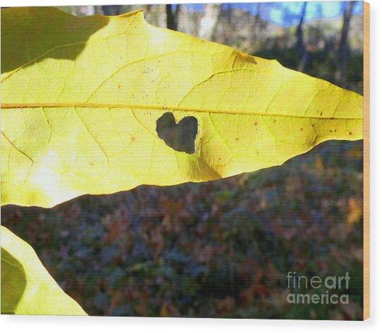 Heart Leaf Wood Print