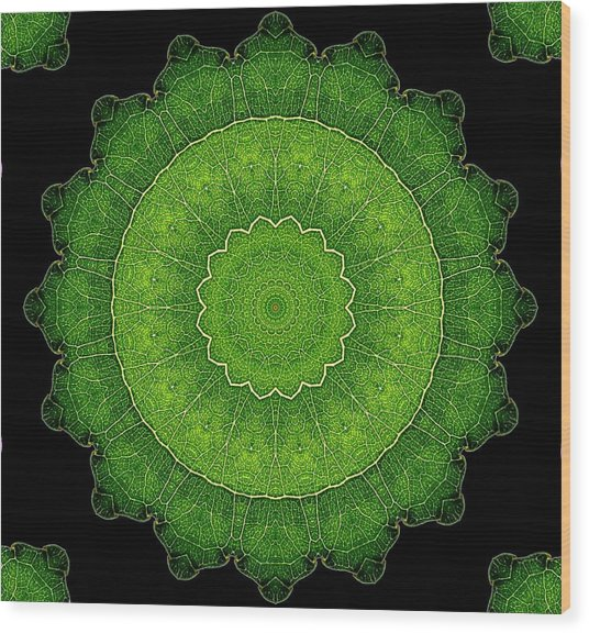 Heart Of Poplar Wood Print