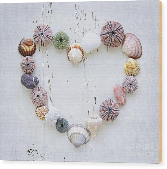 Heart Of Seashells And Rocks Wood Print