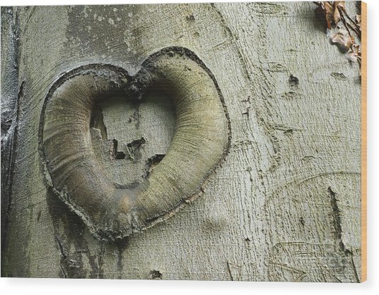 Heart Of The Forest Wood Print
