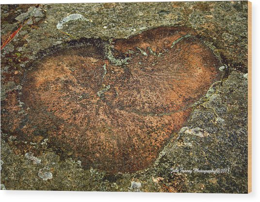 Heart On The Rocks Wood Print