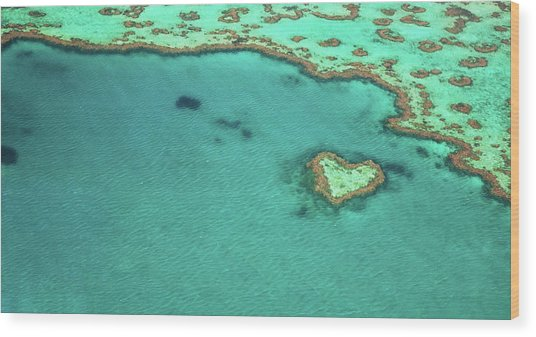 Heart Reef Wood Print by Kokkai Ng