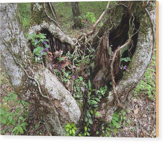 Heart-shaped Tree Wood Print