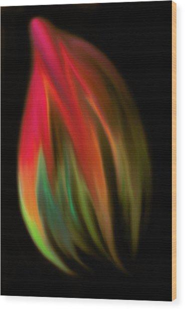 Heat Of The Moment Wood Print