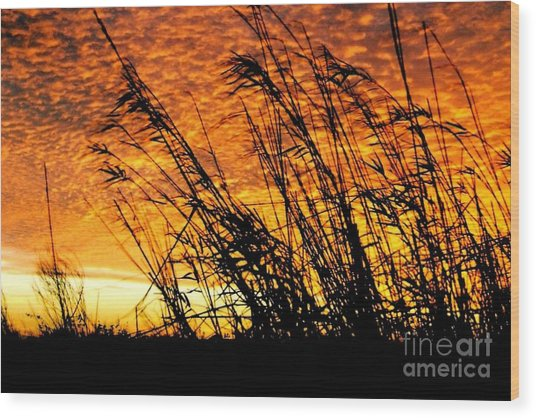 Sunset Heaven And Hell In Beaumont Texas Wood Print