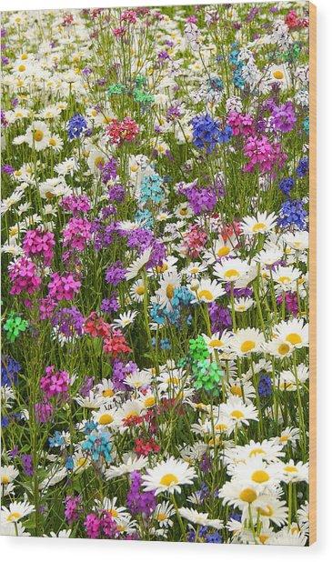 Heavenly Flowers 2 Wood Print