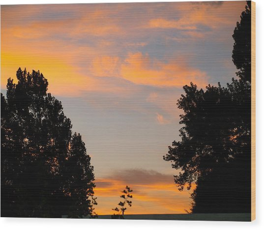Heavenly Orange Wood Print