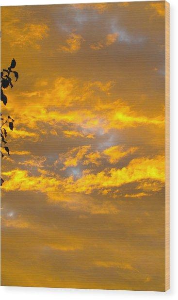 Heaven's Sky Wood Print by Andrea Dale