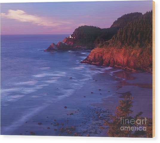 Heceta Head Lighthouse At Sunset Oregon Coast Wood Print