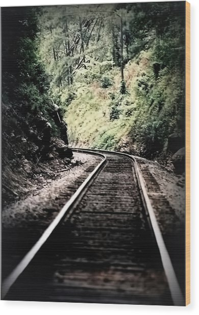 Hegia Burrow Railroad Tracks  Wood Print