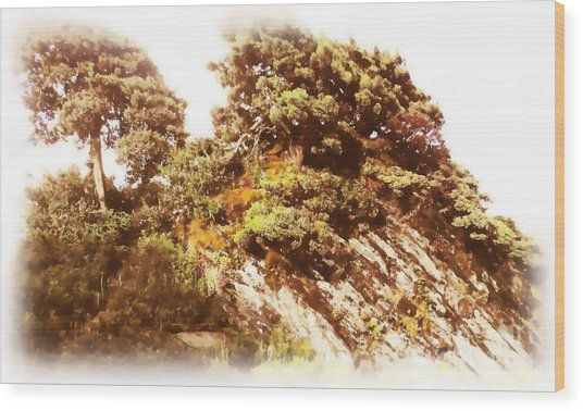 Hehuanshan Wood Print