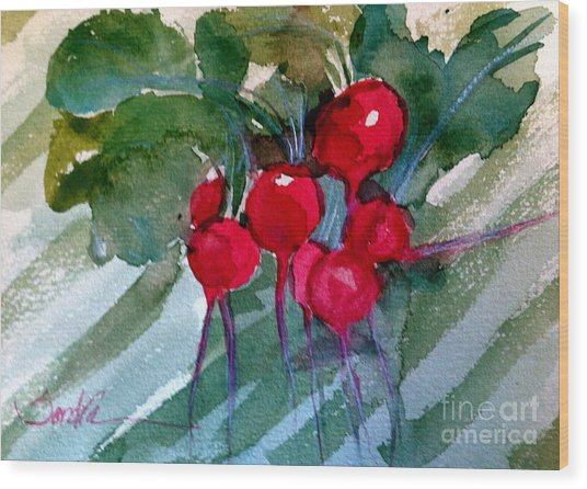 Heirloom Radishes Wood Print by Sandra Stone