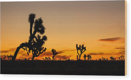 Hello Joshua Tree Wood Print
