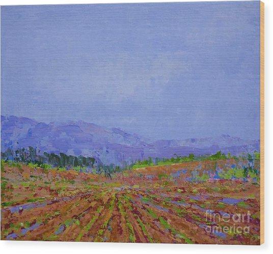 Henderson Farm Wood Print