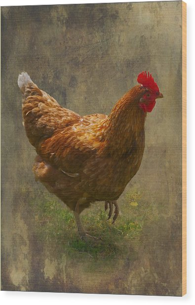 Henrietta The Harris Hen Wood Print