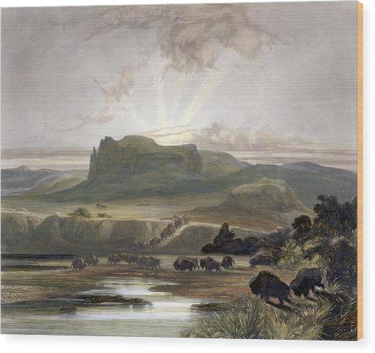 Herd Of Bison On The Upper Missouri Wood Print