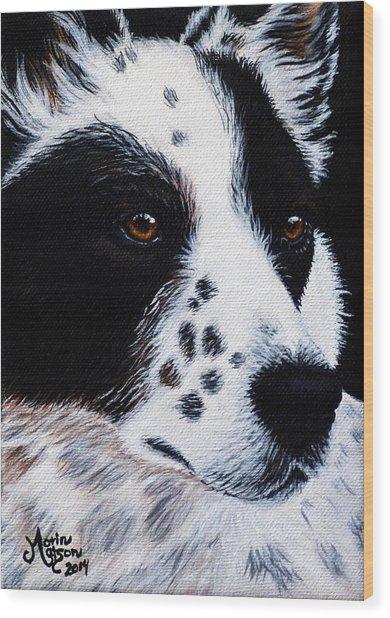 Herding Dog Wood Print