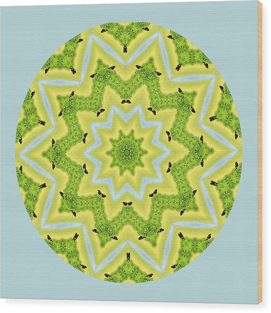 Here Birdie Birdie Mandala Wood Print