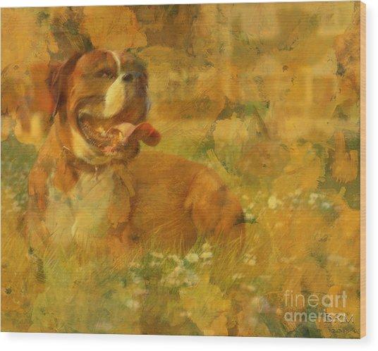 Here Doggie Wood Print
